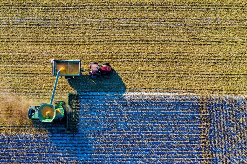 מציאת עבודה בחקלאות באפריקה