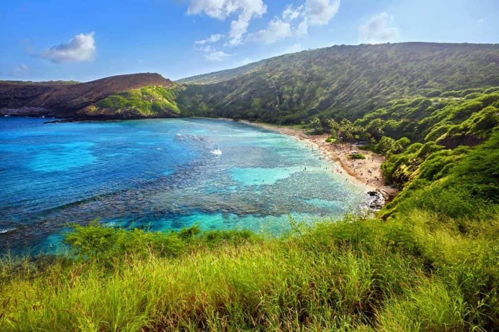 עבודה בהוואי